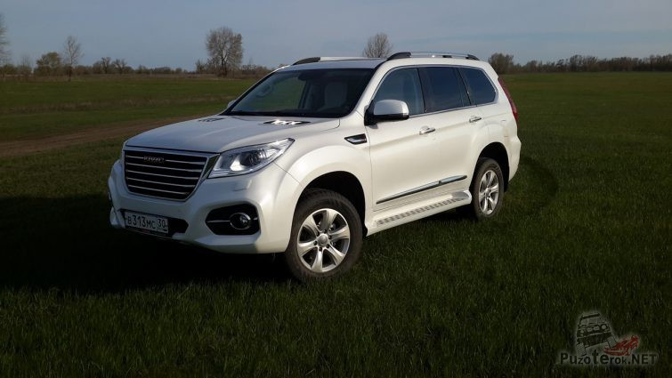 Белый Great Wall Haval в поле
