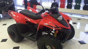 Квадроцикл Stels ATV 100 RS в магазине