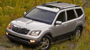 Серый автомобиль в зарослях