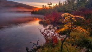 Туман над озером осенью