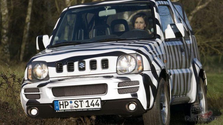 Аэрография в виде зебры на белом авто