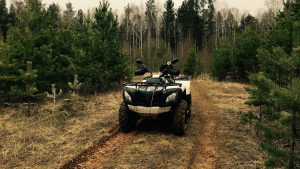 Белый Стелс атв 600 gt в лесу на тропе