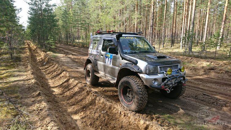 Экспедиционный внедорожник на лесной дороге