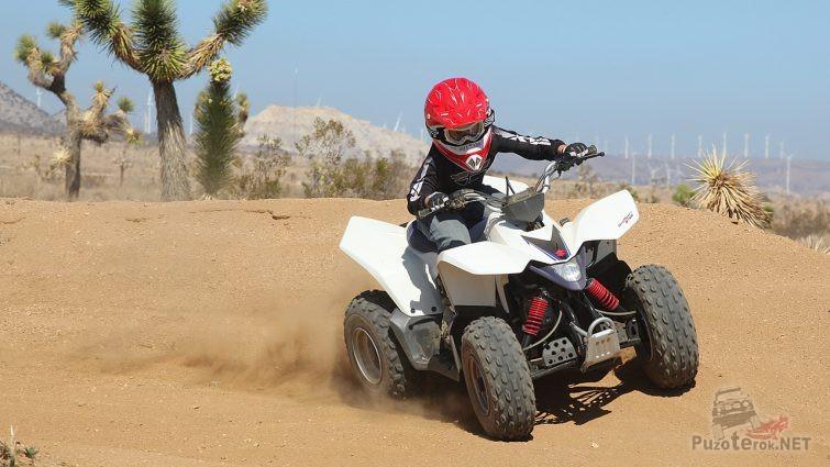 Гонщик на Suzuki Quadsport Z90 в саванне