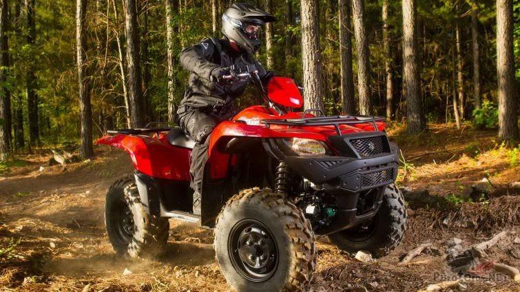 Гонщик на красном квадроцикле в лесу