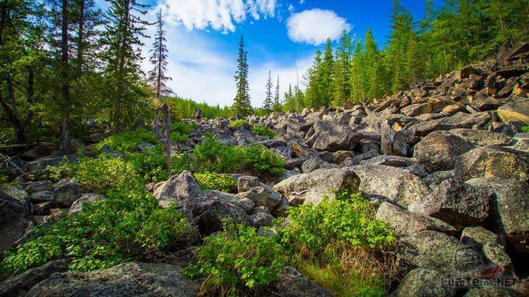 Каменная река у подножья горы