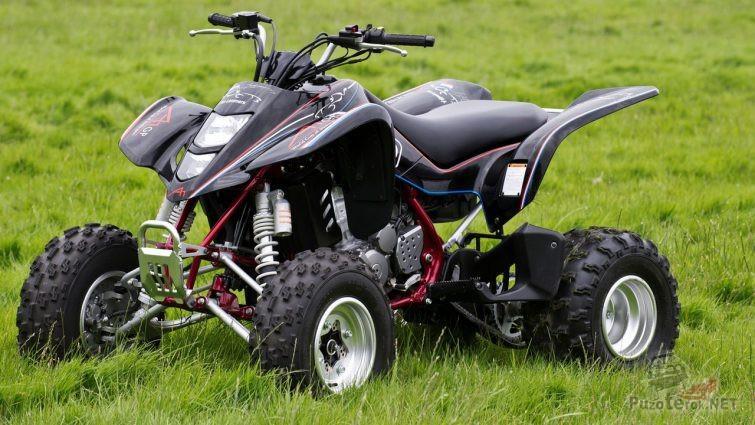 Мощный Suzuki QUADSPORT Z400 в траве