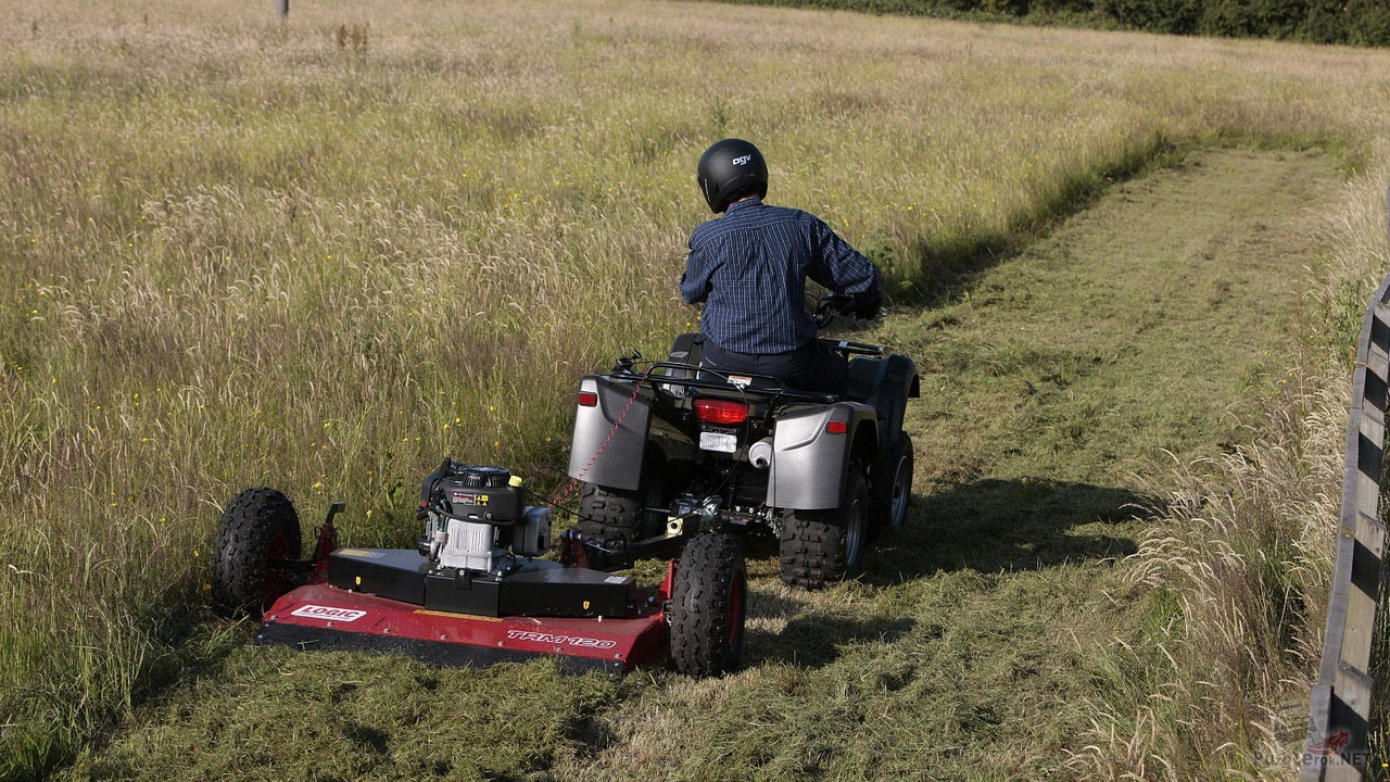 Мужчина с помощью квадроцикла косит траву