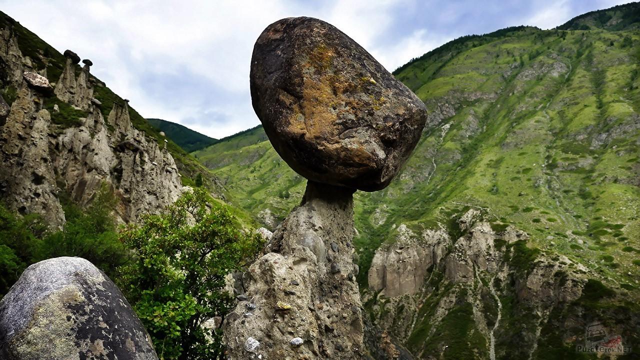 Огромный валун — шляпка гриба
