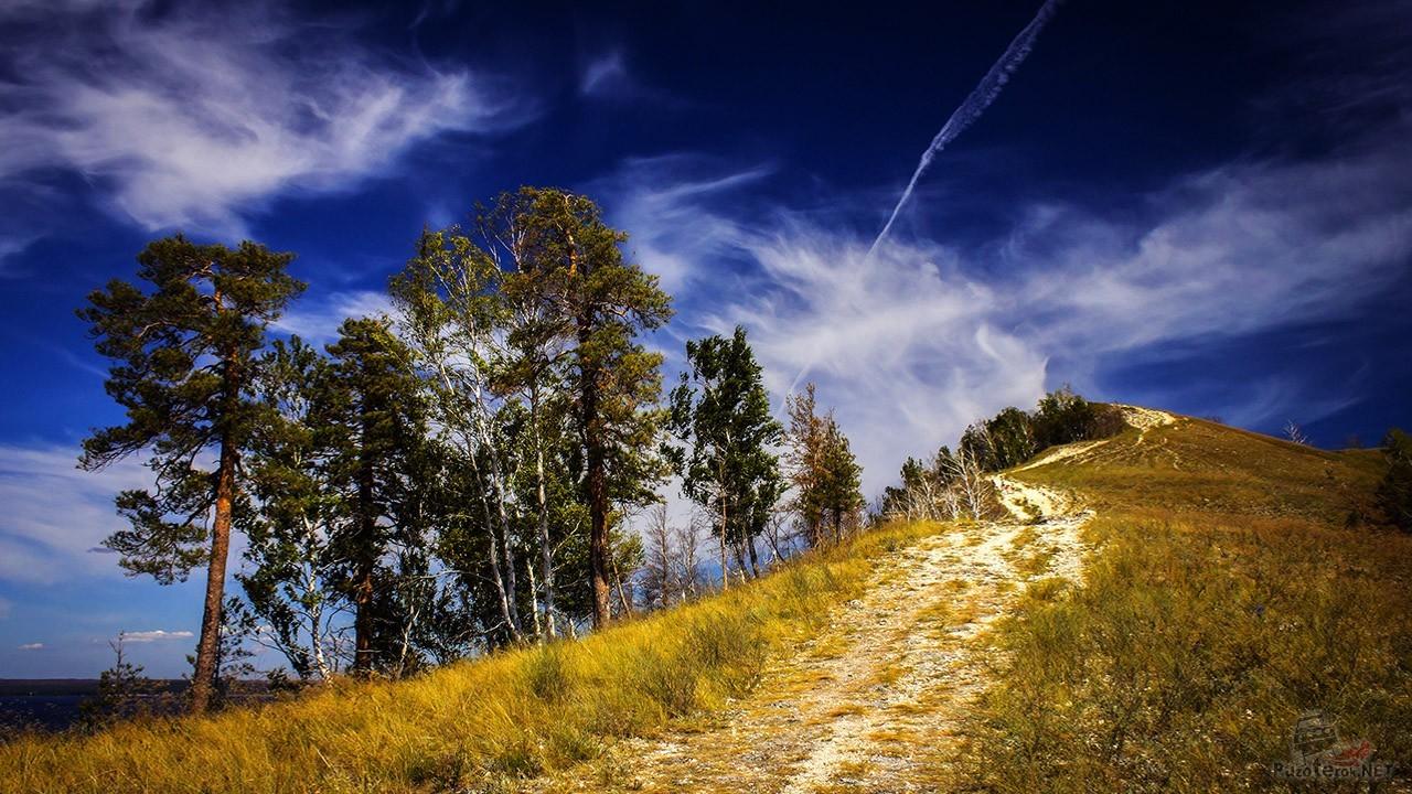 Природа в Жигулёвских горах