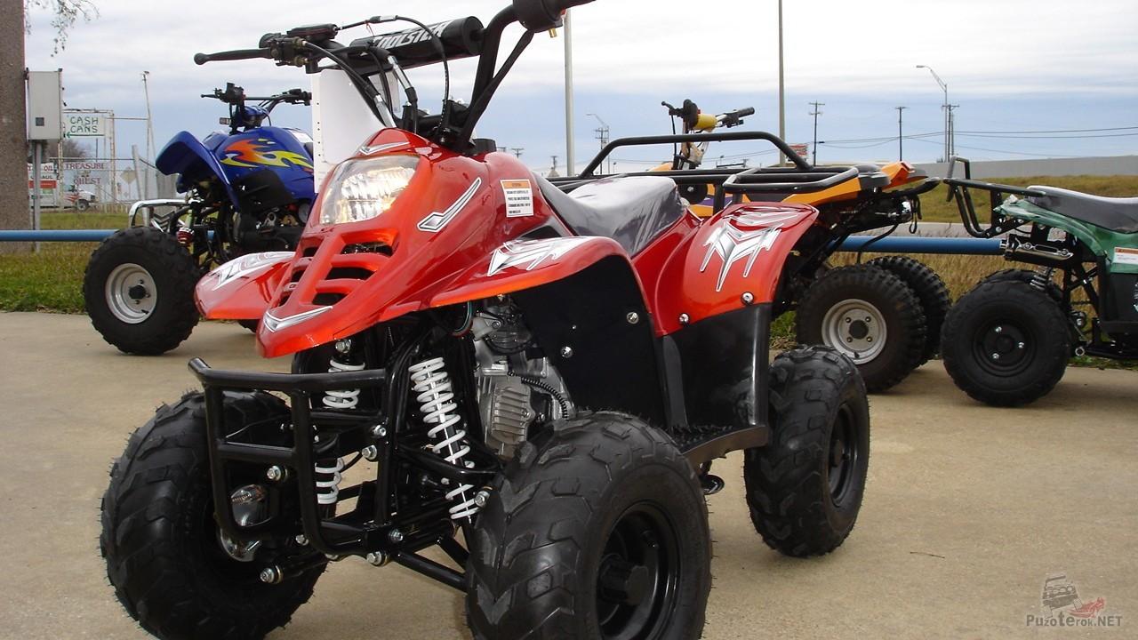 Stels ATV 110 СС рядом с квадроциклами