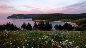 Цветущий луг на горе Лепёшка или Усинском кургане
