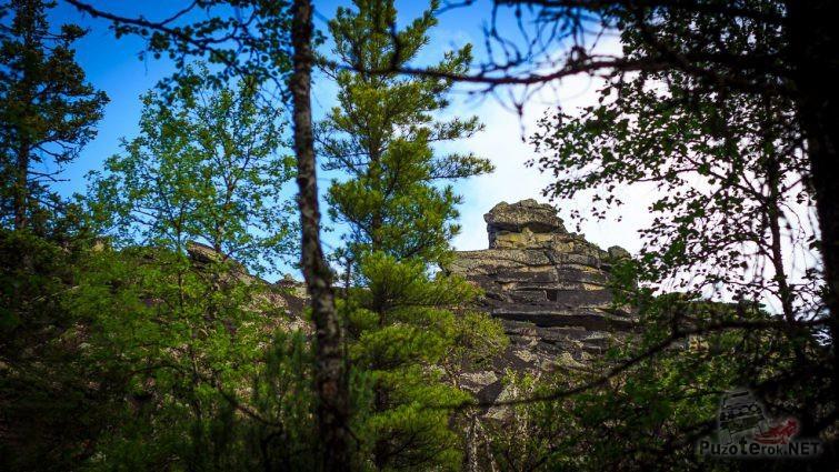 Вершина скалы показалась среди деревьев