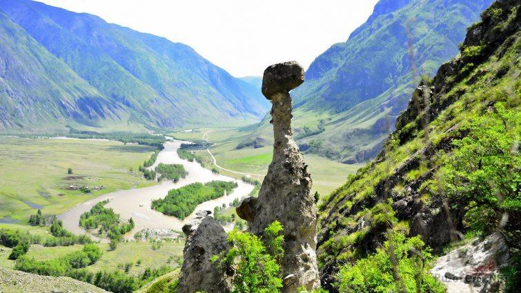 Яркая весенняя зелень в горном Алтае