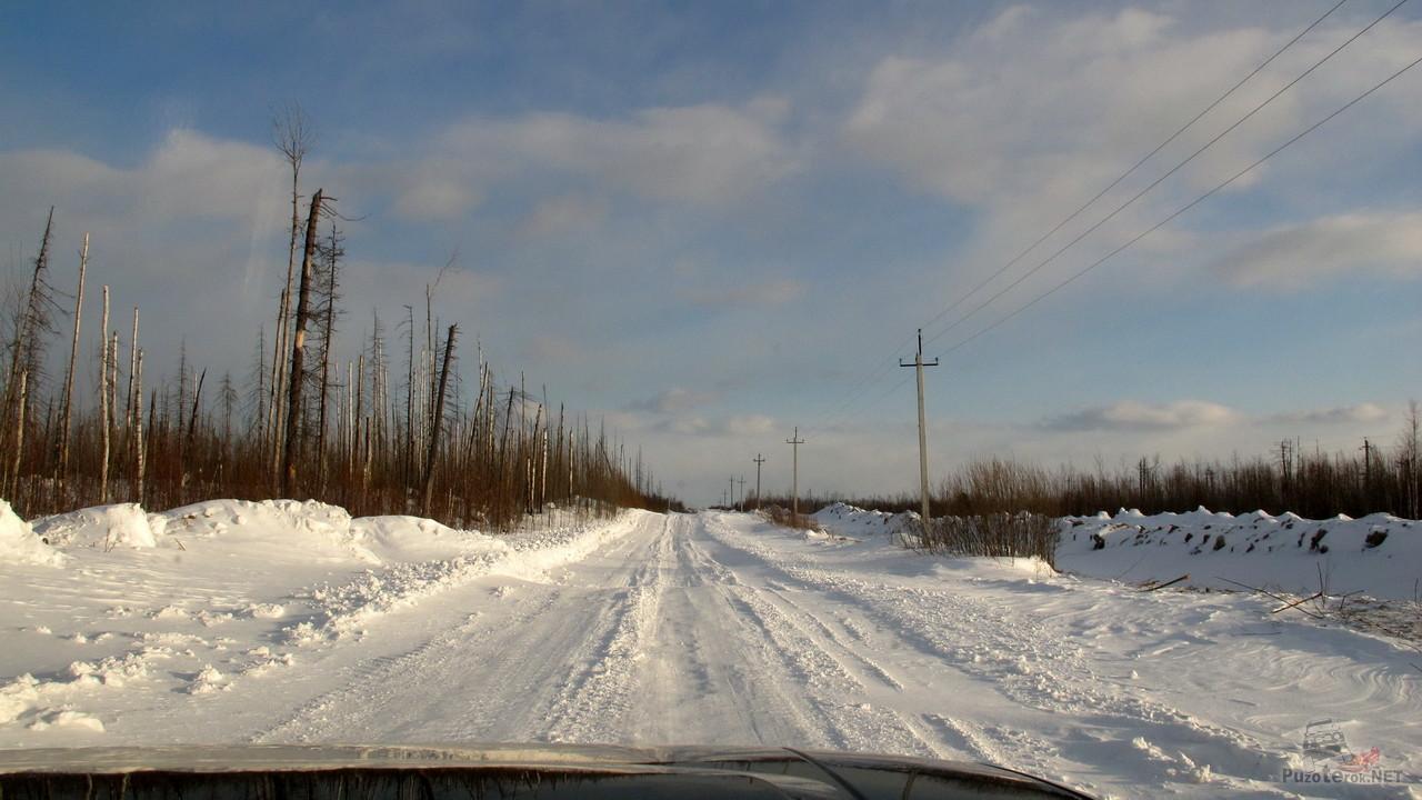 Ответы Минтранса и Росавтодора по дороге на Томск