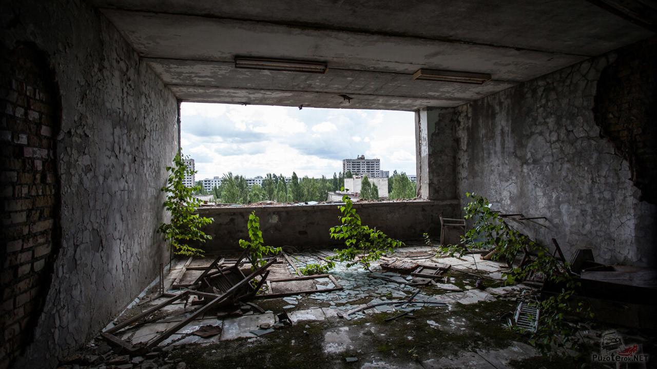 Вид на Припять из заброшенного дома