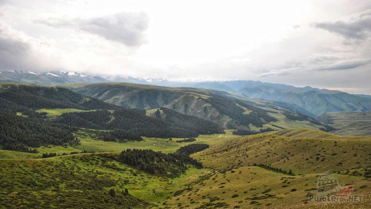 Красивейшая панорама зелёных лугов и лесов