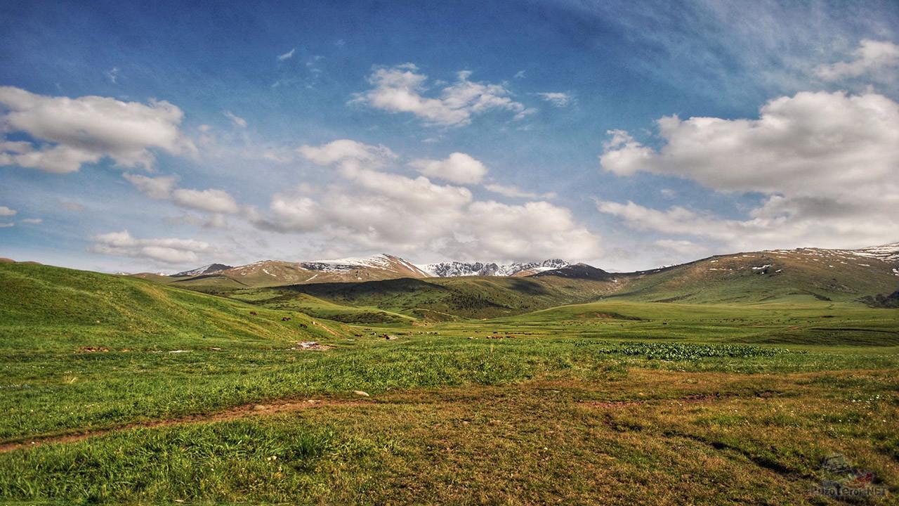 Почти альпийская идиллия на просторах Казахстана