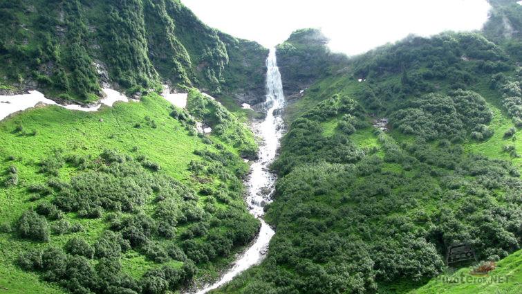 Поток среди летней зелени