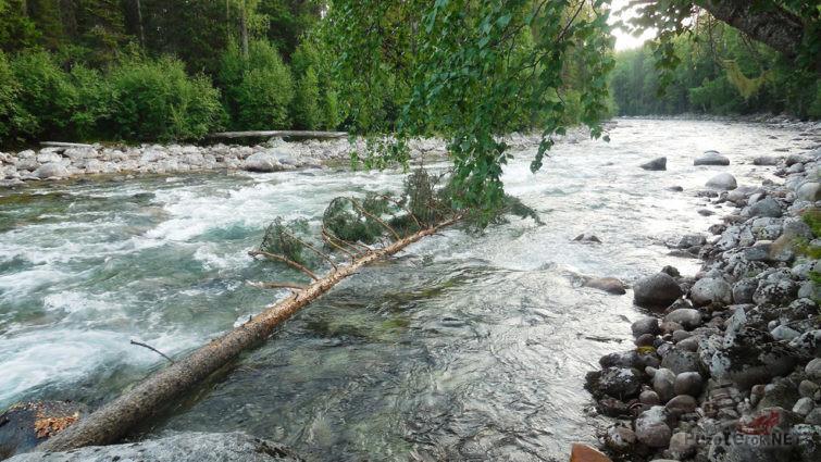 Река Бударман на территории заповедника