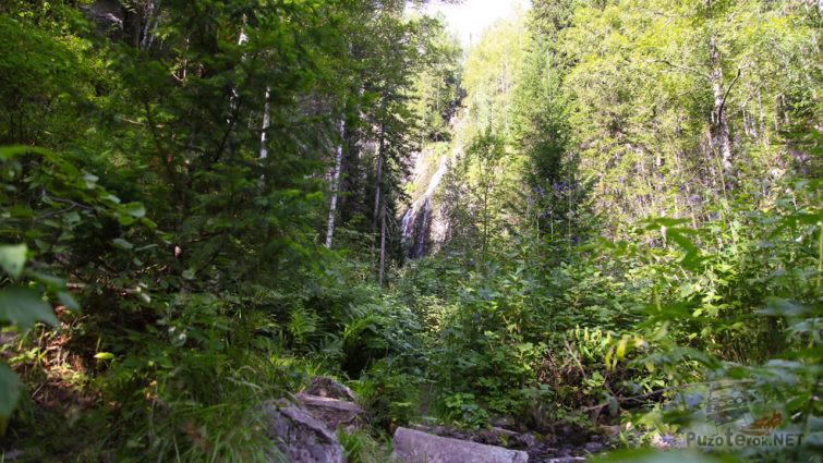 Летняя тропинка к шумному водопаду