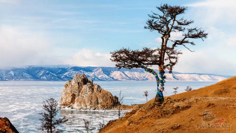 Ритуальное дерево на фоне скалы Шаманки