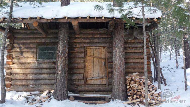 Дом в лесу из брёвен
