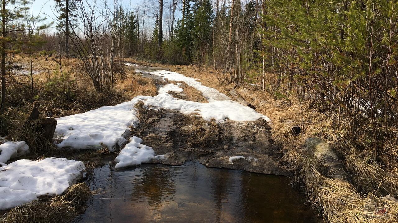 Дорога через ручей