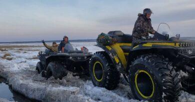 Как сокол едет по снегу