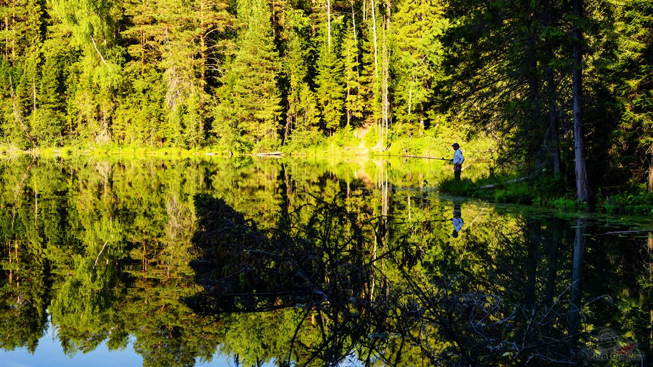 Рыболов на берегу летнего озера