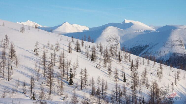 Заснеженный склон горы