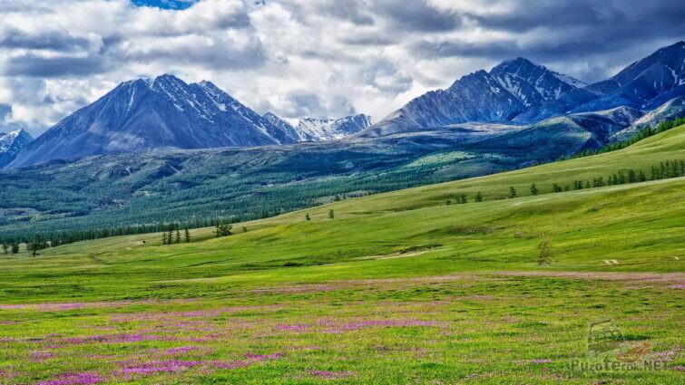 Монгольская степь и горы
