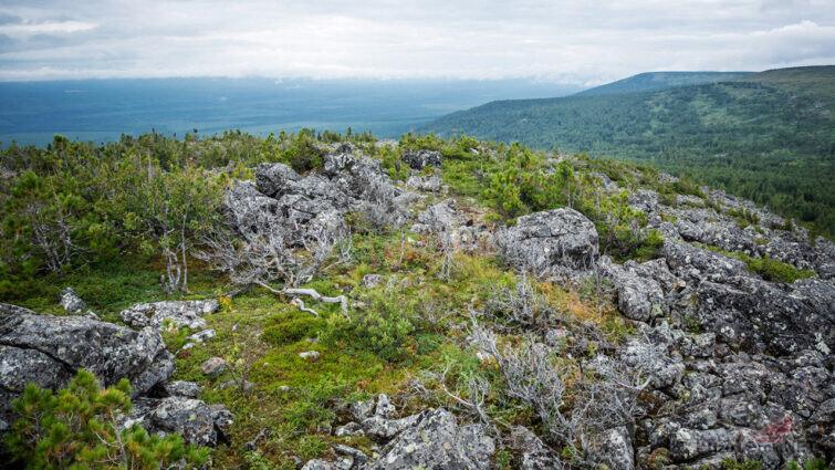 Безлесная каменистая тундра на Северном Урале