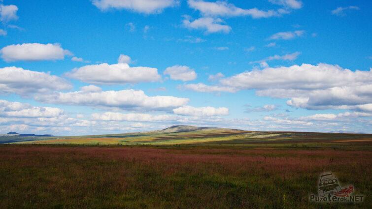 Летняя панорама высокогорной тундры