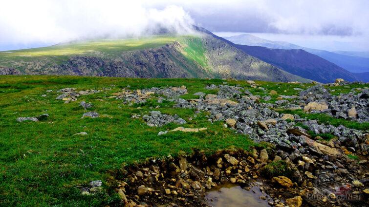 Летняя высокогорная тундра Свердловской области