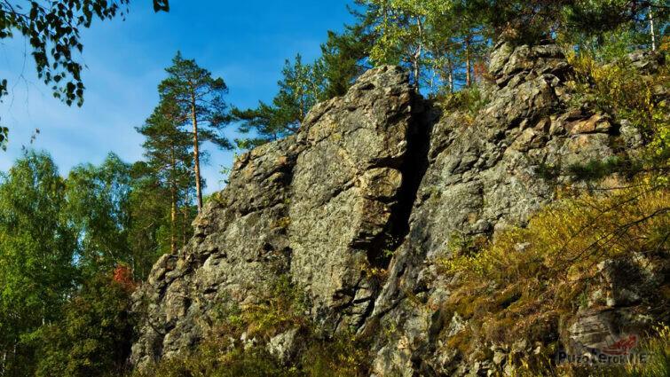 Летняя зелень среди скал