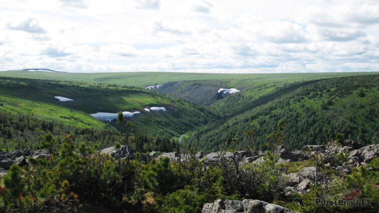 Летняя зелень в каньоне реки Жигалан