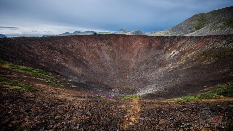 Нежные цветы на стенке вулканического кратера