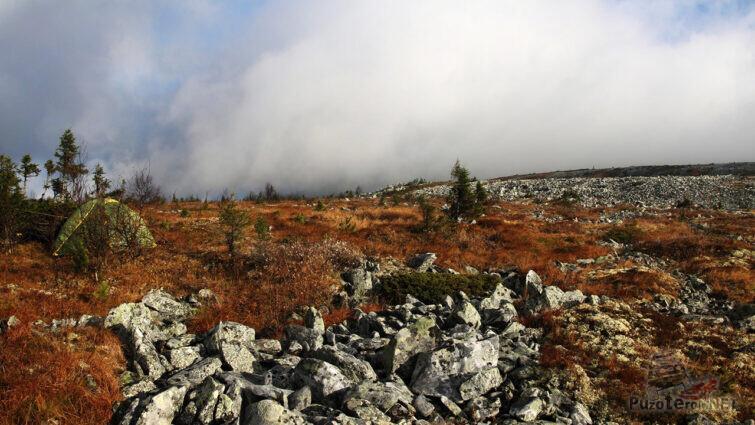 Осень в высокогорной тундре