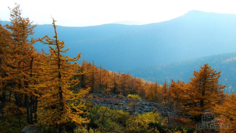 Осенний лес на склонах хребта