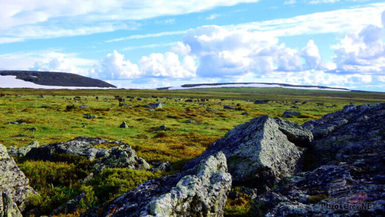 Панорама горной тундры