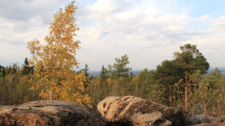 Вид на кроны деревьев с верхушки скалы