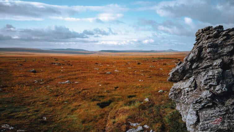 Высокогорная тундра в Пермском крае