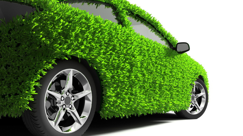 Получение электронной зеленой карты